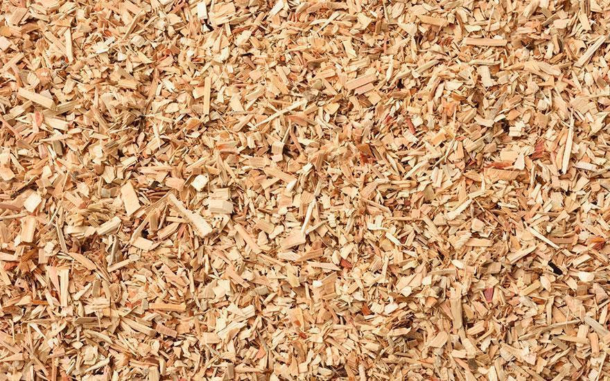 Zrębka biomasa